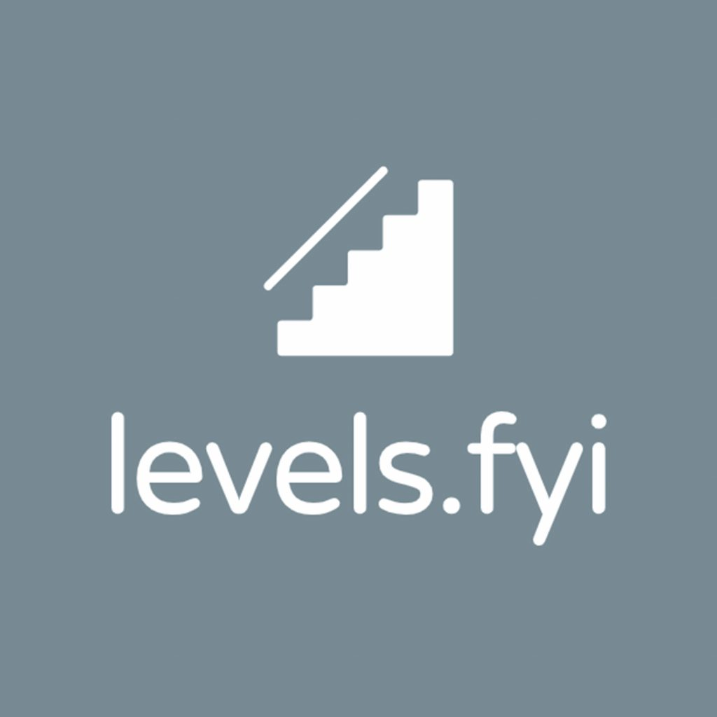 The Levels FYI Logo